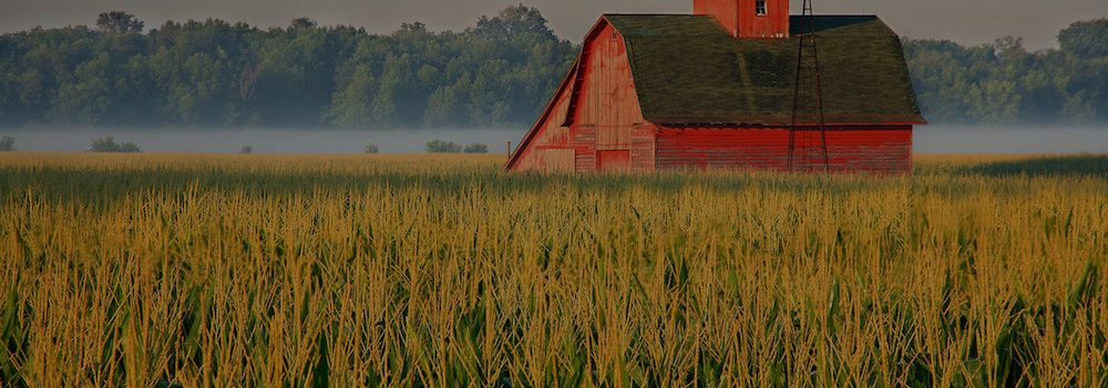 farm and crop insurance New Canton IL